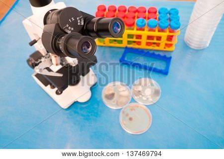 Scientific binocular microscope and petri dishes
