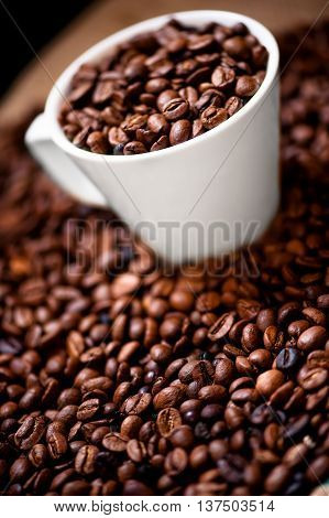 Fresh White Cup Of Hot Brazilian Coffee Beans