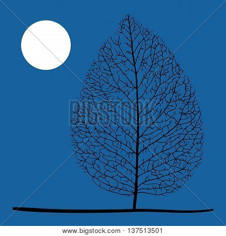 Tree and moon. Lonely dry leaf and moon