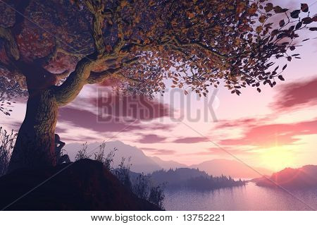 A dreamer sitting under a tree during a stunning sunset