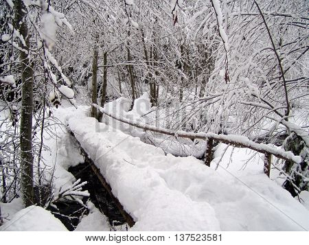 Small wooden bridge through a spring covered with snow in winter