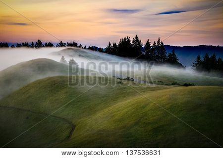 Fog over rolling vibrant green hills at sunset Mount Tamalpais