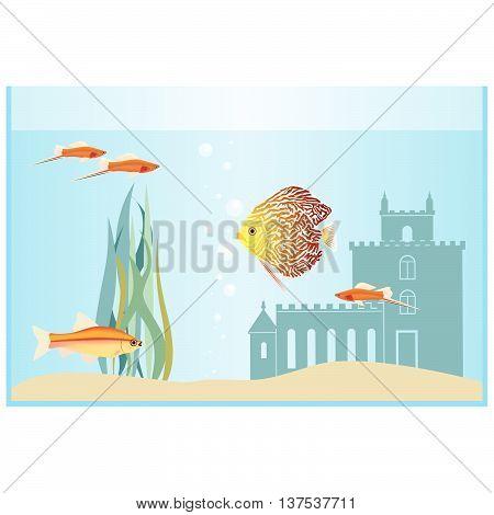Aquarium fish in an aquarium. The illustration on a white background.