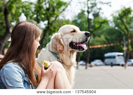 Portrait of a young girl and her dog close up outdoors. Happy owner of eating a green apple and hugs his dog breed golden retriever on a background of summer city. Joint pastime. Human friendship and dogs.
