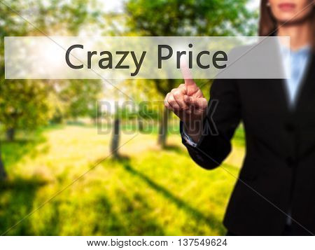 Crazy Price - Successful Businesswoman Making Use Of Innovative Technologies And Finger Pressing But