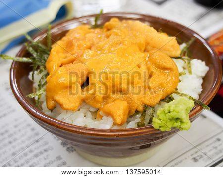 Japanese urchin's egg rice bowl called Uni don