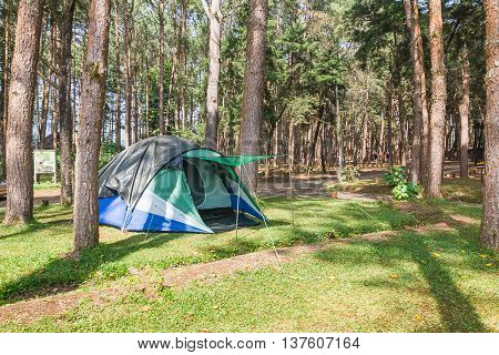 Dome tent for camping of tourist in forest camping site