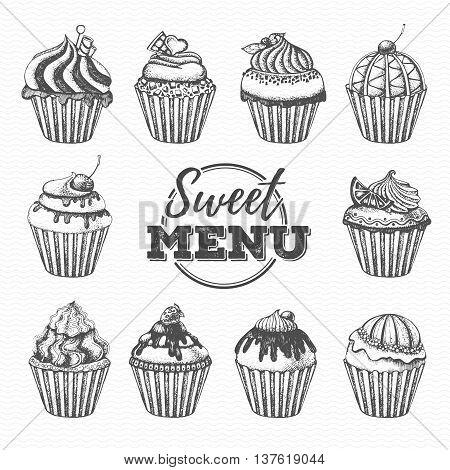 Vector illustration of Vintage dessert menu design. Sweet cupcake