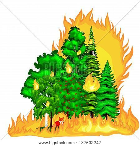 Forest Fire, fire in forest landscape damage, nature ecology disaster, hot burning trees, danger forest fire flame with smoke, blaze wood background vector illustration. Wildfire burning tree in red and orange color.