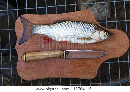chub and a knife on a chopping board