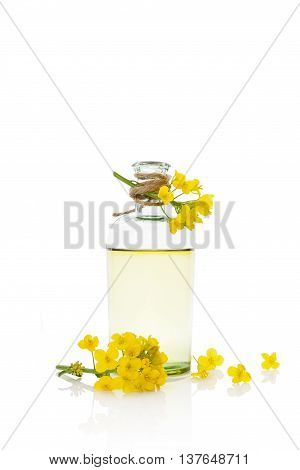 Rapeseed oil and flower isolated on white background.