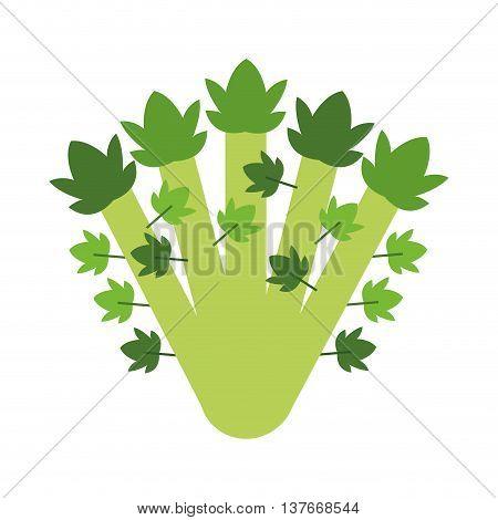 simple flat design whole celery icon vector illustration