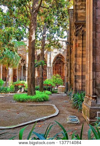 Cloister In Barcelona Cathedral In The Gothic Quarter
