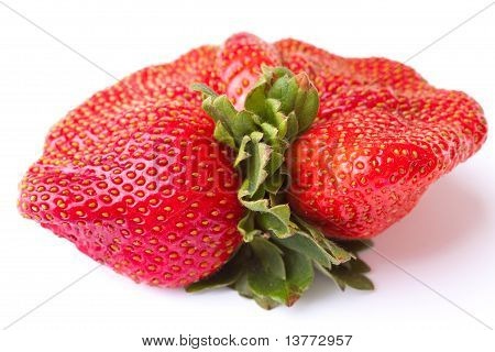 Closeup Fresh Red Strawberry