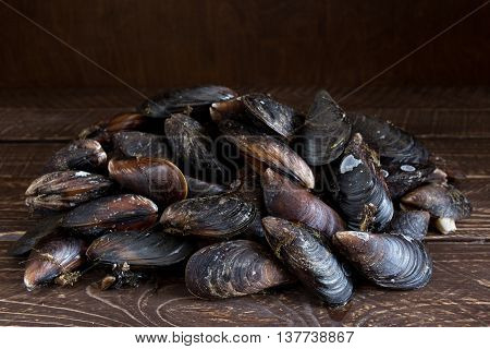 Freshly caught mussels fresh mussels on a wooden table.