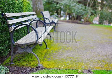 Two Benches On Patio