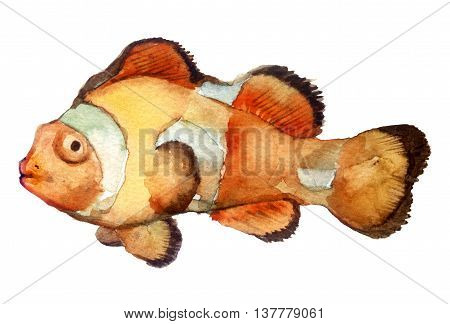 watercolor sketch: a fish on a white background