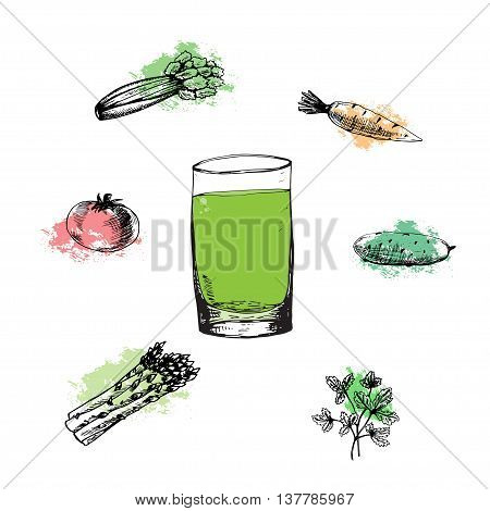 Vegetable green cocktail in glass. Vector illustration on white background. Organic product. Colorless celery, tomato, carrot, cucumber, parsley, asparagus on color spots. Fresh drink.