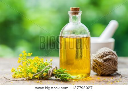 Bottle of rapeseed oil (canola) and repe flowers on table outdoors