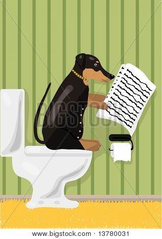 Dog reads news in restroom, vector illustration