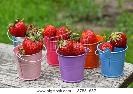Small Colorful Toy Buckets Full Of Red Strawberry