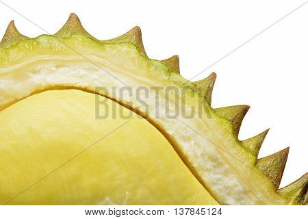 yellow durian in side mon thong durian fruit isolated on white background