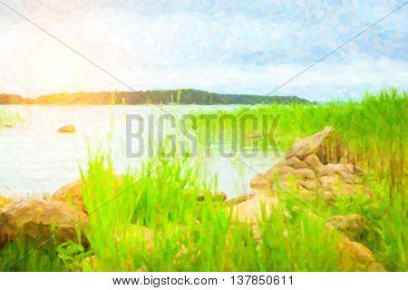 Green bulrush in a quiet Bay of the Finnish Gulf. Area for summer camping in the woods. Hamina, Finland