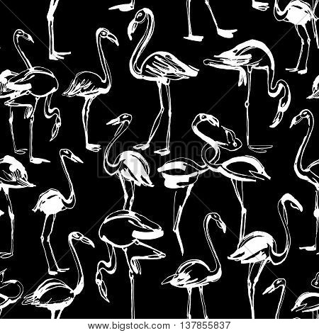 Vector illustration  Tropical exotic birds flamingos summer seamless pattern. Black and white inversion