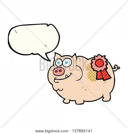 freehand drawn comic book speech bubble cartoon prize winning pig