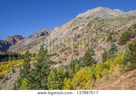 Fall colors at Lundy Lake California USA