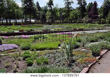 Garden Sanssouci