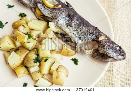 Tasty grilled trout with potatoes. Food theme. International cuisine.