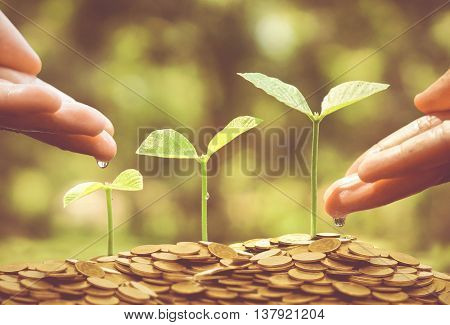Business with csr practice / Business with environmental concern