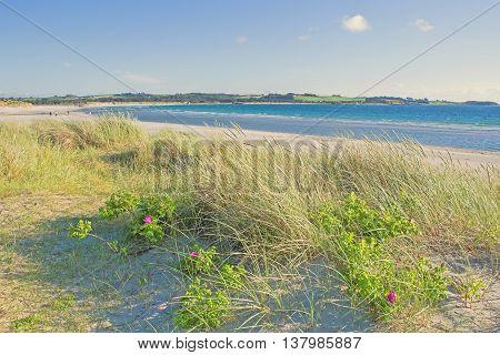 Norwegian beach near Stavanger city on a sunny day