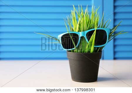 Green plant with sunglasses on blue folding screen background