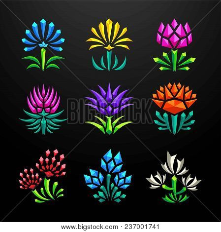 Abstract Flower Crystal Design Collection Set Vector And Illustration