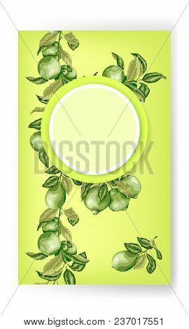 Banner With Circle Frame In Bright Green Colors With Limes And Lemon Tree Branches. Vertical Line Of