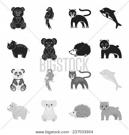 Rhino, Koala, Panther, Hedgehog.animal Set Collection Icons In Black, Monochrome Style Vector Symbol