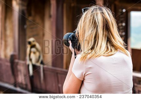 Beautiful Young Female Photographer Takes Picture Of Monkey Sitting Outside. Travel Concept In India