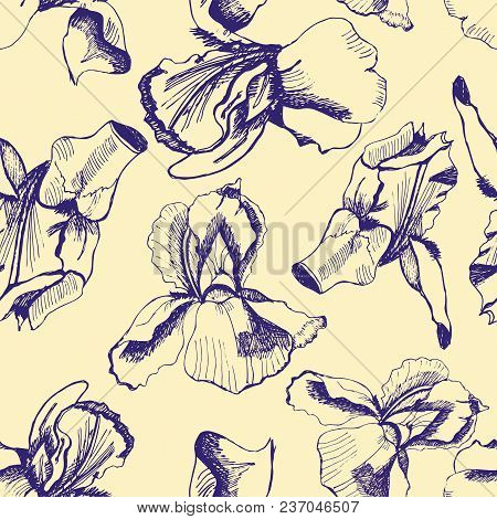 Seamless Pattern  With Hand Drawn Graphic  Sketch With Iris. Blue Graphic Flowers On Yellow Backgrou