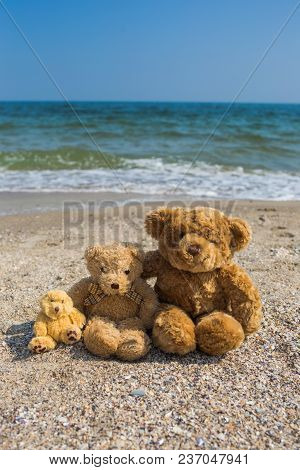 Happy Family On Summer Vacation At Seaside Concept. 3 Cute Brown Teddy Bears Sit At Tropical Beach N