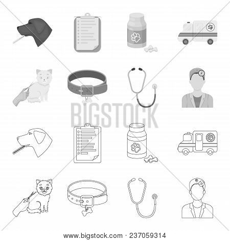 Collar, Bone, Cat, Haircut .vet Clinic Set Collection Icons In Outline, Monochrome Style Vector Symb