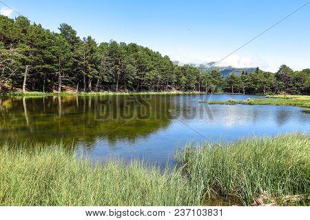 Panorama To Bassa De Oles. Aran Valley In The Catalan Pyrenees, Spain