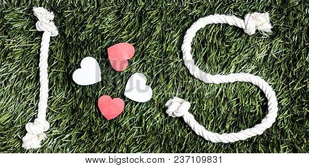 I And S Letters And Three Paper Heart Cut Outs On Grass