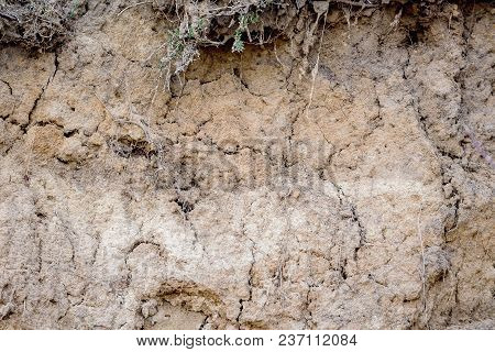 Clay Rock. Texture Of Clay With Cracks