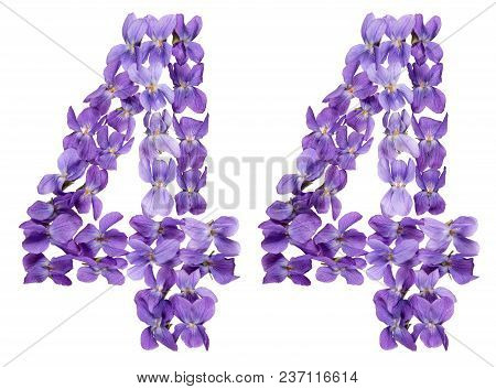 Arabic Numeral 44, Forty Four, From Flowers Of Viola, Isolated On White Background