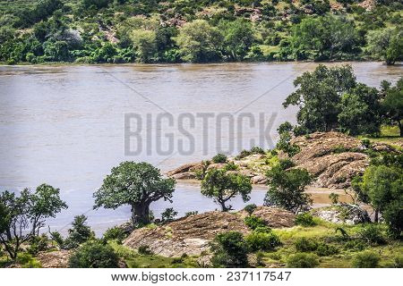 Boundary River Between South Africa And Zimbabwe  In Mapungubwe National Park, South Africa