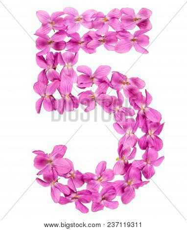 Arabic Numeral 5, Five, From Flowers Of Viola, Isolated On White Background
