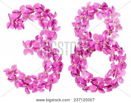 Arabic Numeral 38, Thirty Eight, From Flowers Of Viola, Isolated On White Background