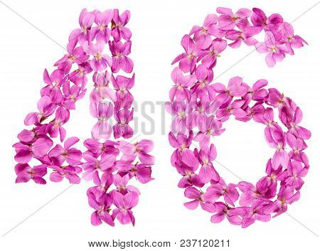 Arabic Numeral 46, Forty Six, From Flowers Of Viola, Isolated On White Background